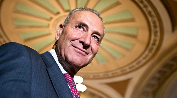 Sen. Schumer Introduces Gun Control Bill After Brady Campaign Tantrum